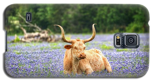 Springtime In Texas Galaxy S5 Case by Dave Files