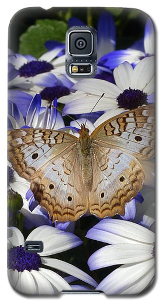 Springtime In The Desert Galaxy S5 Case