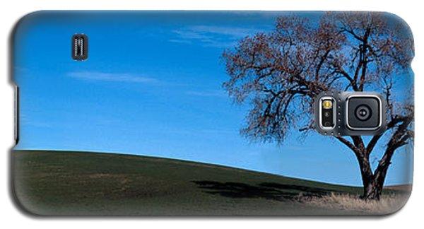Springtime In The Palouse Galaxy S5 Case by Sharon Elliott