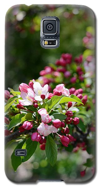 Galaxy S5 Case featuring the photograph Springtime by Linda Mishler
