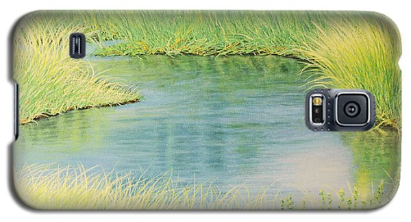 Springtime Marsh-new Beginnings Galaxy S5 Case