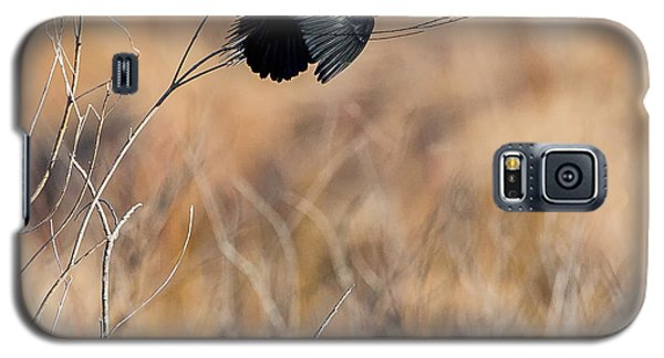 Springtime Song Square Galaxy S5 Case by Bill Wakeley