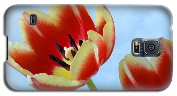 Springtime Tulips. Galaxy S5 Case by Terence Davis