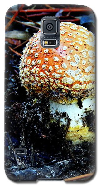 Galaxy S5 Case featuring the photograph Sprout by Faith Williams