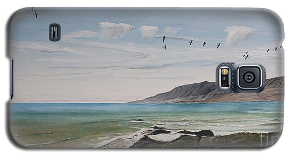 Squadron Of Pelicans Central Califonia Galaxy S5 Case by Ian Donley