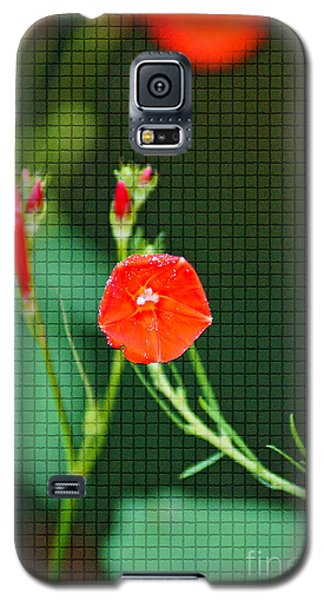 Squared Glory Galaxy S5 Case