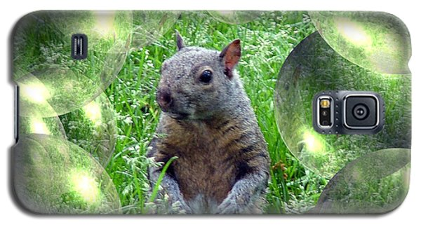 Squirrel In Bubbles Galaxy S5 Case
