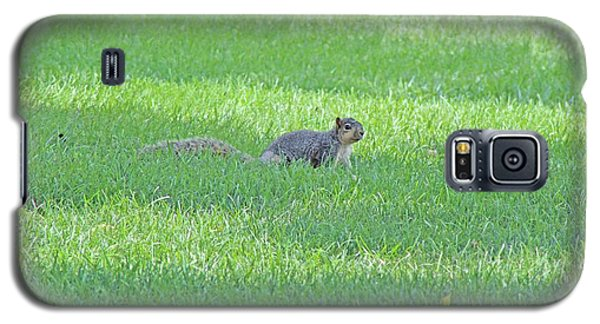 Galaxy S5 Case featuring the photograph Squirrel In Grass by Lorna Rogers Photography