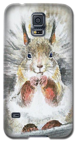 Squirrel Galaxy S5 Case