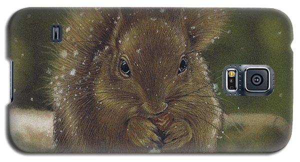 Squirrel Nutkin Galaxy S5 Case