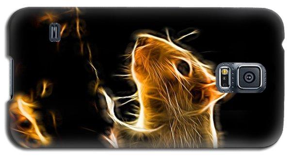 Squirrel Galaxy S5 Case by Ron Harpham