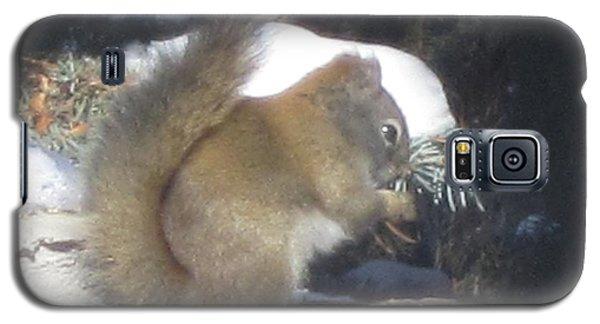 Squirrel Three Galaxy S5 Case