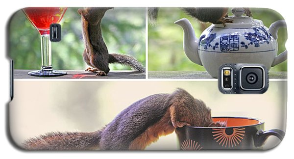 Galaxy S5 Case featuring the photograph Squirrels And Their Drinks Mosaic by Peggy Collins