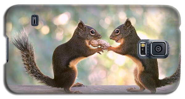 Squirrels That Share Galaxy S5 Case