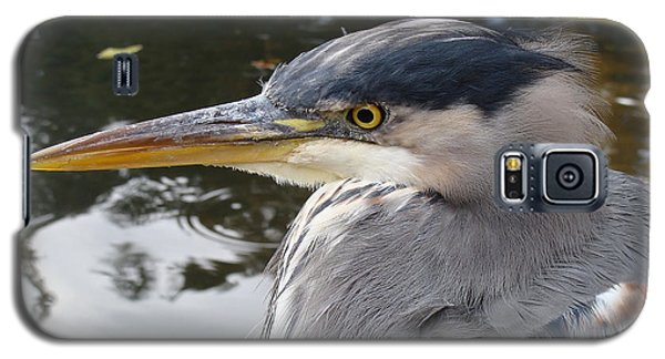 Galaxy S5 Case featuring the photograph Sr Heron  by Cheryl Hoyle