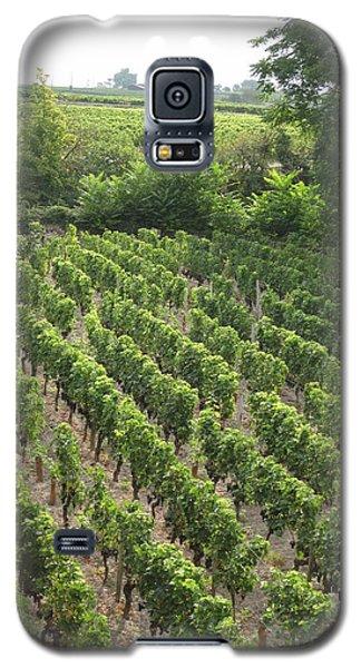 St. Emilion Vineyard Galaxy S5 Case by HEVi FineArt