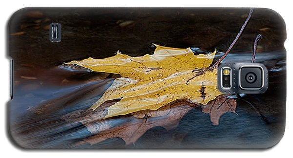 Stacked Autumn Leaves On Water Galaxy S5 Case