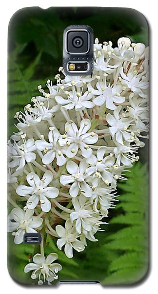 Galaxy S5 Case featuring the photograph Stagger Grass Lily by William Tanneberger