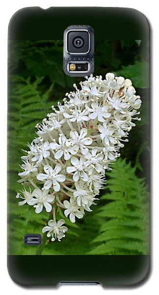 Stagger Grass Lily Galaxy S5 Case