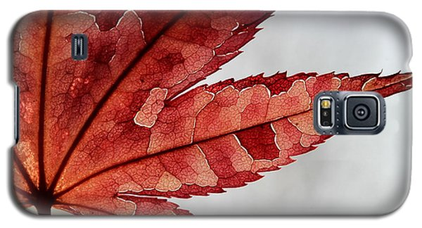 Galaxy S5 Case featuring the photograph Stained Glass by Kenny Glotfelty