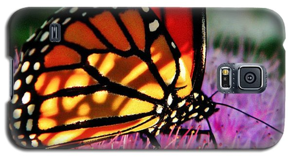 Stained Glass Monarch  Galaxy S5 Case