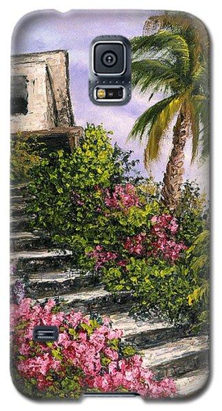 Stairway Garden Galaxy S5 Case