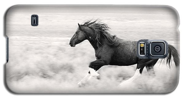 Stallion Blur Galaxy S5 Case