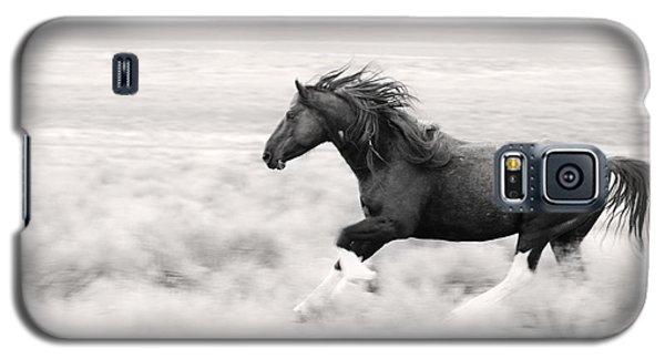 Stallion Blur Galaxy S5 Case