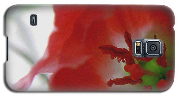 Stamen Splendor Galaxy S5 Case