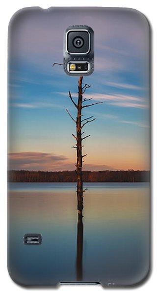 Stand Alone 16x9 Crop Galaxy S5 Case