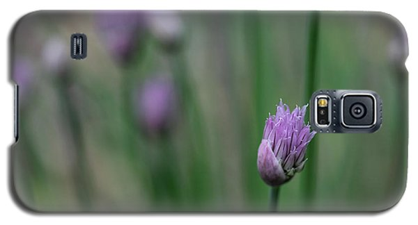 Galaxy S5 Case featuring the photograph Not Just A Pretty Flower by Debbie Oppermann
