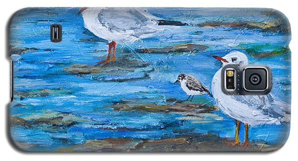 Sea Birds Wait Galaxy S5 Case