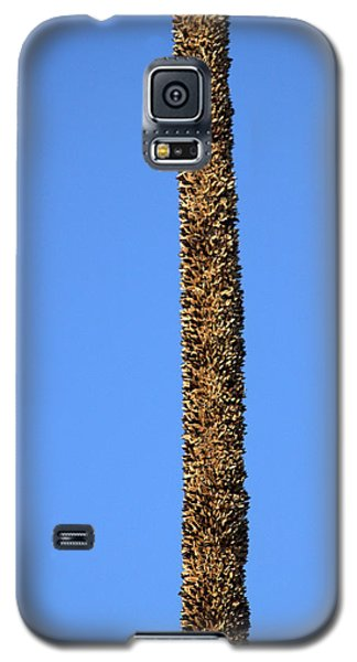 Standing Alone Galaxy S5 Case by Miroslava Jurcik