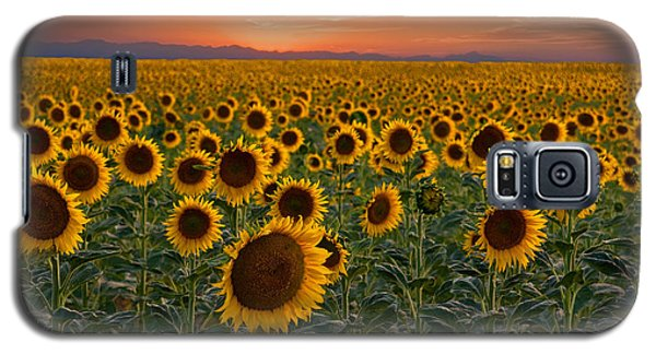 Standing At Attention Galaxy S5 Case by Ronda Kimbrow