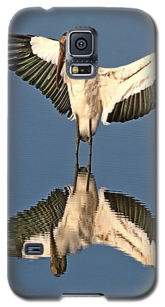 Standing At The Mirror Galaxy S5 Case