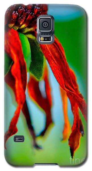 Standing Bright Galaxy S5 Case