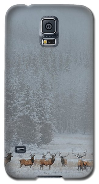 Cold Galaxy S5 Case - Standing In Storm by Yun Wang
