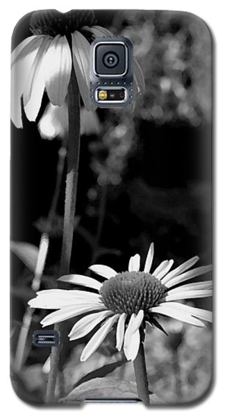 Galaxy S5 Case featuring the photograph Coneflowers Standing Tall   by James C Thomas