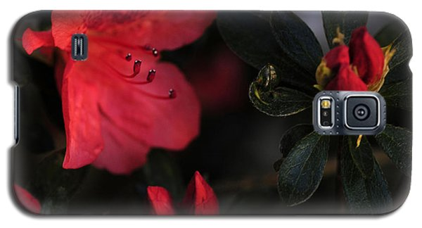 Galaxy S5 Case featuring the photograph Standing Watch by Wanda Brandon