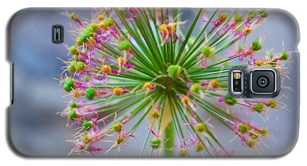 Galaxy S5 Case featuring the photograph Star Burst by John S