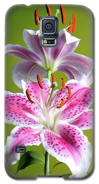 Star Gazer Lily Galaxy S5 Case