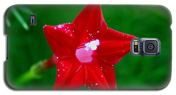 Star Glory Galaxy S5 Case