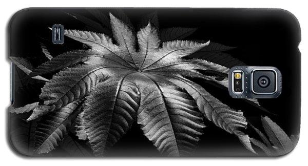 Star Leaf Galaxy S5 Case by Lorenzo Cassina