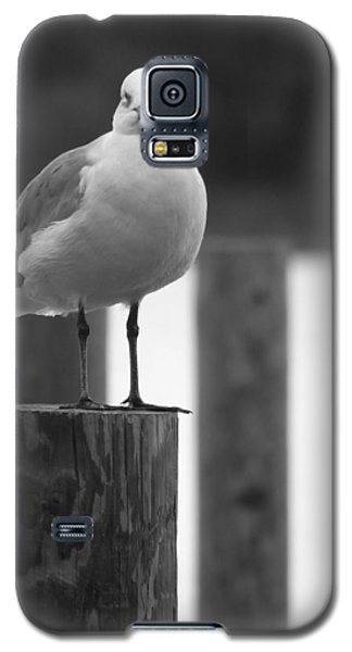Stare Down Galaxy S5 Case