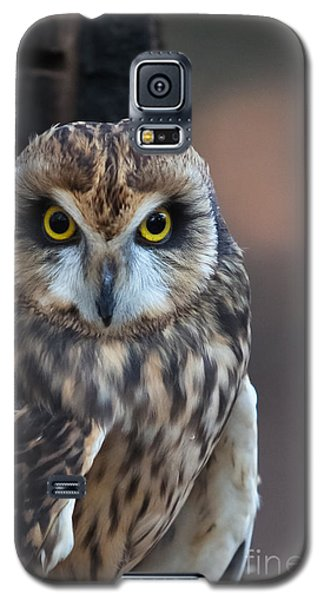 Stare Galaxy S5 Case by Geri Glavis