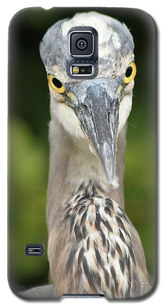 Galaxy S5 Case featuring the photograph Staredown by Heather King