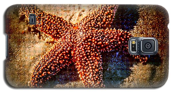 Starfish 2 Galaxy S5 Case