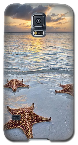 Galaxy S5 Case featuring the photograph Starfish Beach Sunset by Adam Romanowicz