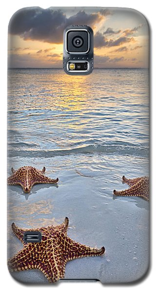 Starfish Beach Sunset Galaxy S5 Case