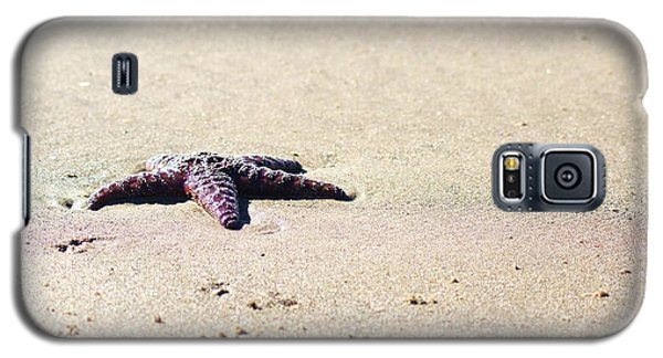 Starfish On The Beach Galaxy S5 Case
